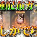 【荒野行動】東京喰種の配布ガチャが🐷リュックしかでない件ww金枠は?w豚汁大量作成祭り始まりました。無料無課金リセマラプロ解説。こうやこうど拡散のため👍お願いします【アプデ最新情報攻略まとめ】